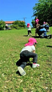 芝生でハイハイの画像